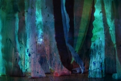 mistery di notte, Installation, year 2009, 150x200 cm, inch 59.05x78.74