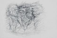 2-Anne-Marie-WEYERS-Dessin-titre-LA-PROMISE-REDd-dessins-014